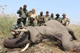 NAMIBIA: Own Use Elephant & Hippo In The Caprivi | AfricaHunting.com