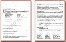 how to write curriculum vitae basic job appication letter curriculum vitae curriculum vita how to write