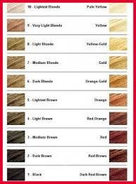 Wella Toner Chart Before And After Wella Toner Chart For Orange Hair Www Bedowntowndaytona Com