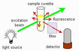 Fluorescence Spectrometry Fluorescence Spectrometry
