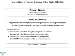 A Summary For A Resumes How To Write A Good Summary For A Resume
