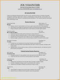 Good Resume Tips Best Resume Entrancing Good Resume Examples Also What Is A Cover Letter