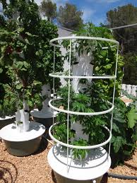 time on one tower while delivering faster results with less labor fewer pests less fungi and at a much lower cost makes aeroponic towers our favorite