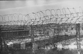 barbed wire fence concentration camp.  Concentration A Section Of The Plaszow Concentration Camp Behind Barbed Wire Throughout Barbed Wire Fence Concentration Camp R