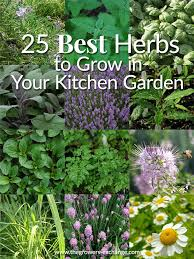 when you re ready to herb plants please check out our join our gardening community