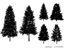 木 白黒 ベクターのイラスト素材 23476383 Pixta