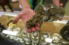 the top marijuana industry jobs ireggaenation los angeles ca 19 dave warden a bud tender at private