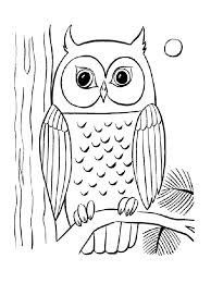 Small Picture Owl coloring pages night moon ColoringStar