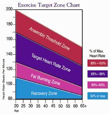 Cardio Training Zone Chart 65 Hand Picked Aerobic Heart Rate Zone Chart