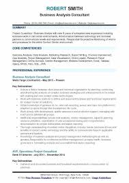 Research Document Template Business Analyst Plan Template Luxury Project Management Cost