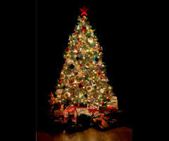 Christmas Tree Origin | fishwolfeboro