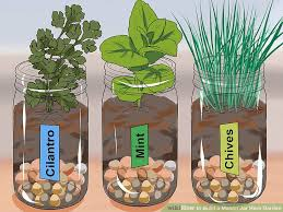image titled build a mason jar herb garden step 7