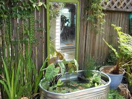 budget friendly small ponds you can
