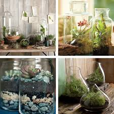 ... Gorgeous Home Interior Ornament With Various Indoor Plant Decoration :  Incredible Image Of Accessories For Green ...