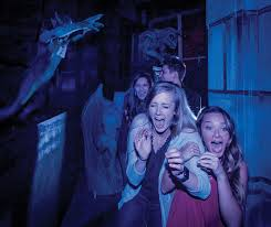 spotlight busch gardens williamsburg howl o scream 6