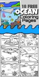 All kids network is dedicated to providing fun and educational activities for parents and teachers to do with their kids. Free Ocean Color By Number