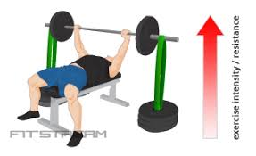 How To Improve Your Bench Press  Bench 300Strength Training Bench Press
