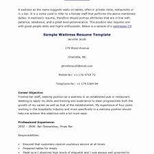 Professional Server Resume Beauteous Server Job Duties Resume Premium Publix Cashier Job Description
