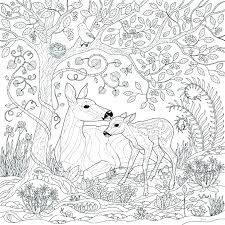 Forest Coloring Pages Printable Download Forest Coloring Pages Free