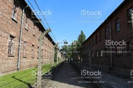 barbed wire fence concentration camp. Modren Concentration Barbed Wire Fence At The Nazi Extermination Camp Royaltyfree Stock Photo And Wire Fence Concentration Camp B