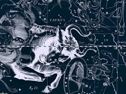 Star Chart Wallpaper Free Download Star Chart Taurus Wallpapers And Images