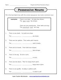 Singular And Plural Possessive Nouns Worksheet 3Rd Grade ...