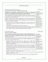 Business Development Manager Resume Bestresume Com