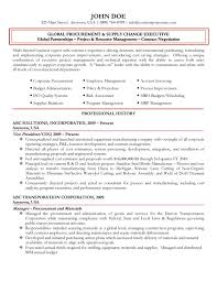Global Procurement Executive Resume