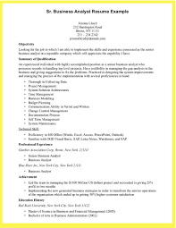 Resume Application Analyst Resume