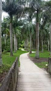 mckee botanical garden vero beach south florida royal palm grove in the gardens