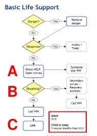 First Aid Procedure Flow Chart Leader Resources