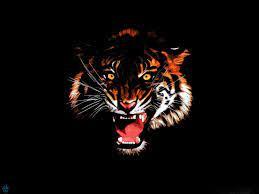 Animal wallpaper, Tiger painting ...