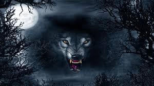 Evil Wolf Abstract Ultra Hd 4k Wallpapers Black Angry Wolf