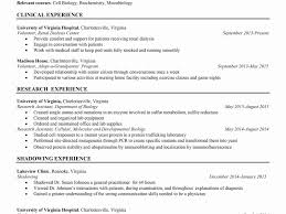 Alluringing Resume Template Word With Travele Templates