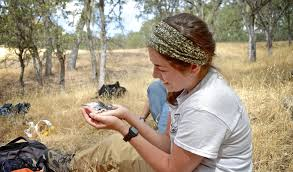 sign language section materials wildlife biology research paper 24 7