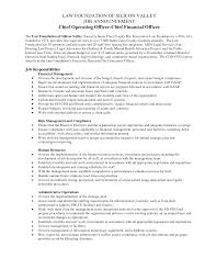 Deputy Coo Job Description - Tier.brianhenry.co