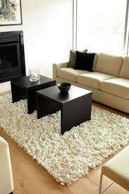 Shaggy Rugs For Living Room 15 Best Images About Shag Rugs On Pinterest Barcelona Felted