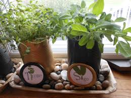 Herb Garden Kitchen How To Set Up A Window Herb Garden Garden Design Ideas