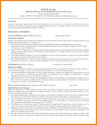 Chartered Accountant Resume Doc Best Dissertation Results