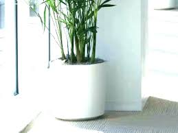 large indoor plant pots indoor ceramic plant pots planters for indoor plants large indoor pots terrarium