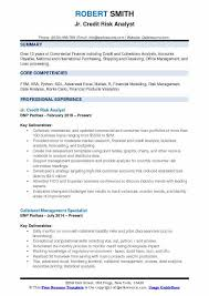 Credit Risk Analyst Sample Resume