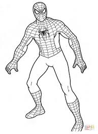 Small Picture Spiderman coloring pages Free Coloring Pages