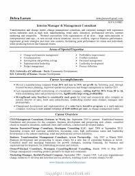 Sample Management Consultant Resume Professional Change Management Cv Example Fearsome Management 37