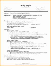 Resume Chic Teacher Resume Examples With Resume Format For
