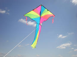 i am the essayist an essayist by heart a thinker of truth a kite