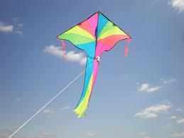 i am the essayist an essayist by heart a thinker of truth a kite