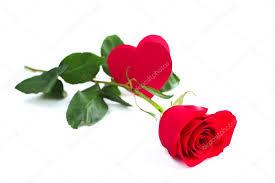 Risultati immagini per la rosa e il cuore