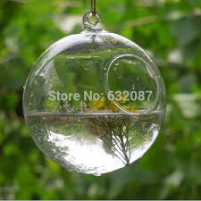 Decorative Hanging Glass Balls Beauteous Free Shipping Hanging Glass Ball Terrarium With Small Open 32cm 32cm