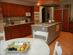 can i paint my kitchen cabinetsKitchen  Old Kitchen Cabinets Can I Paint Kitchen Cabinets