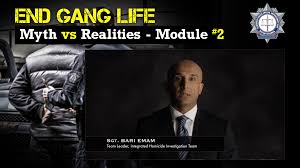 essays on gangs myths and realities of gang life the combined myths and realities of gang life the combined forces special myths as a gangster s girlfriend